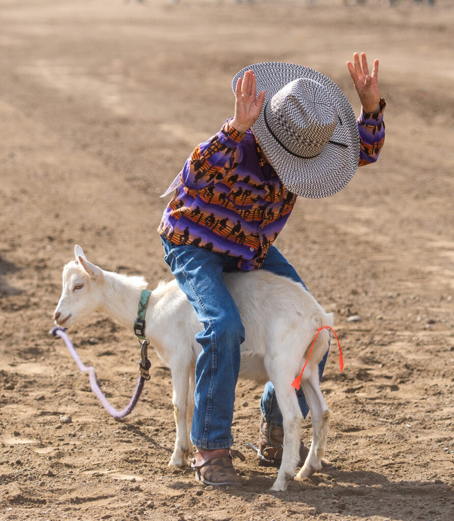 Little Britches Tail Tying